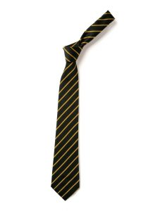 Holsworthy/Okehampton Community College Tie