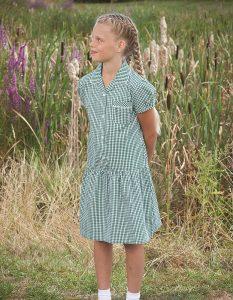 Gingham Drop Waist School Summer Dress (Ashley)