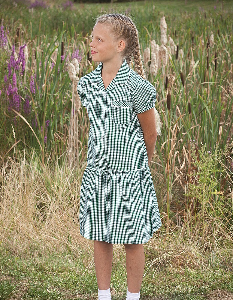 Gingham Drop Waist School Summer Dress (Ashley)