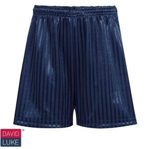 Shadow Stripe PE Shorts