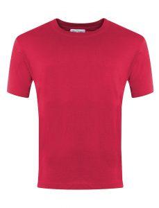 Champion Cotton T. Shirt - Blue Max