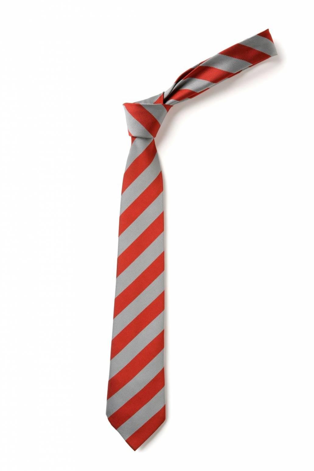 St John's RC Primary School Tie