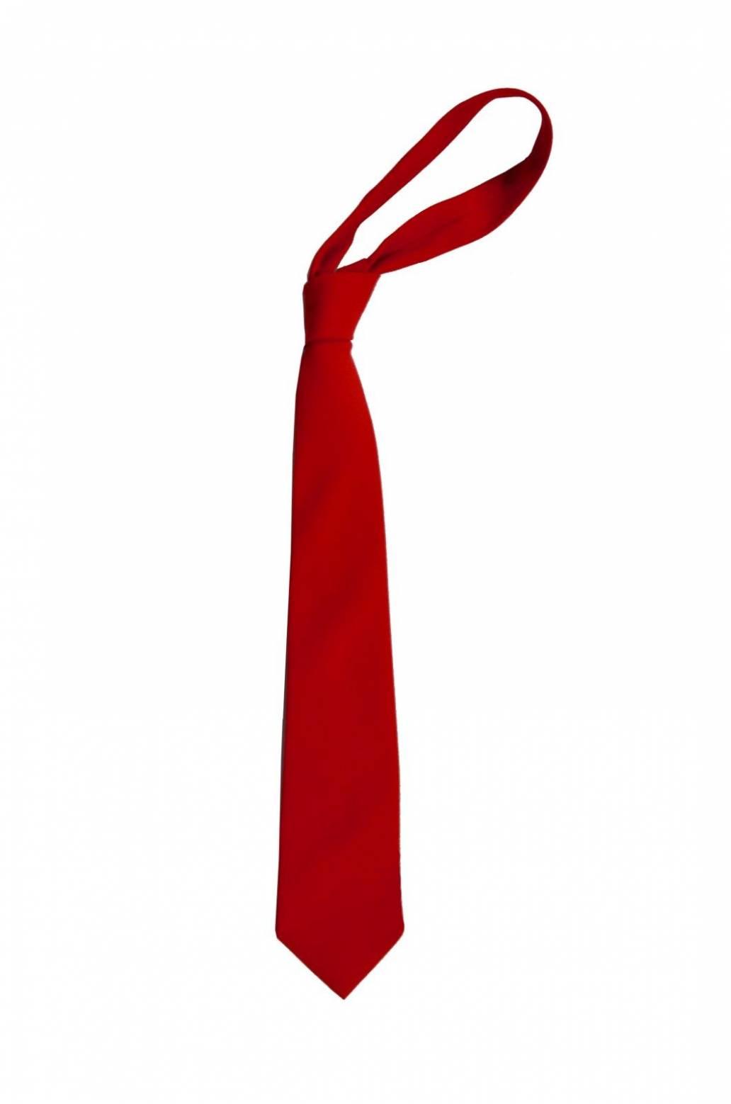 St John's RC Primary School Red Tie
