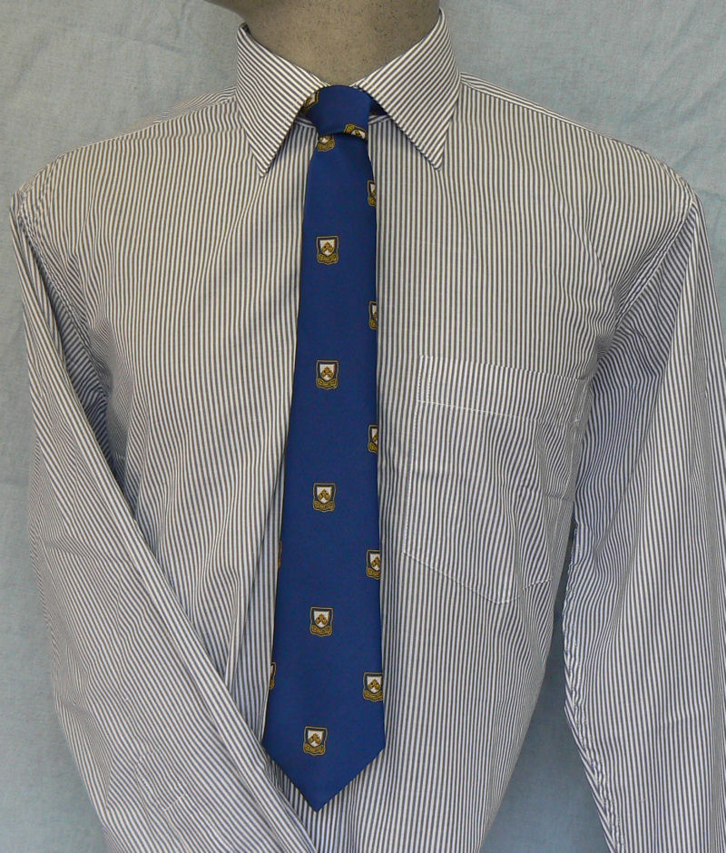 Colyton Grammar Long Sleeve Striped Shirt