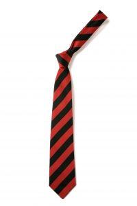 Okehampton/Axminster Primary School Tie