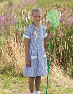 Stripe Button Front School Summer Dress (Kinsale)