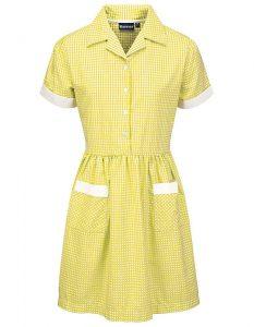 Gingham Button Front School Summer Dress (Ayr)