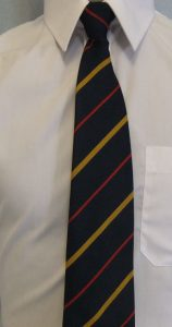Clyst Vale Community College Clip On Tie