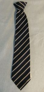 Sidmouth Primary School Clip-On Tie