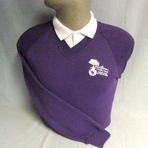 Montgomery Primary School V-Neck Sweatshirt