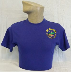 St Davids Primary School PE T Shirt