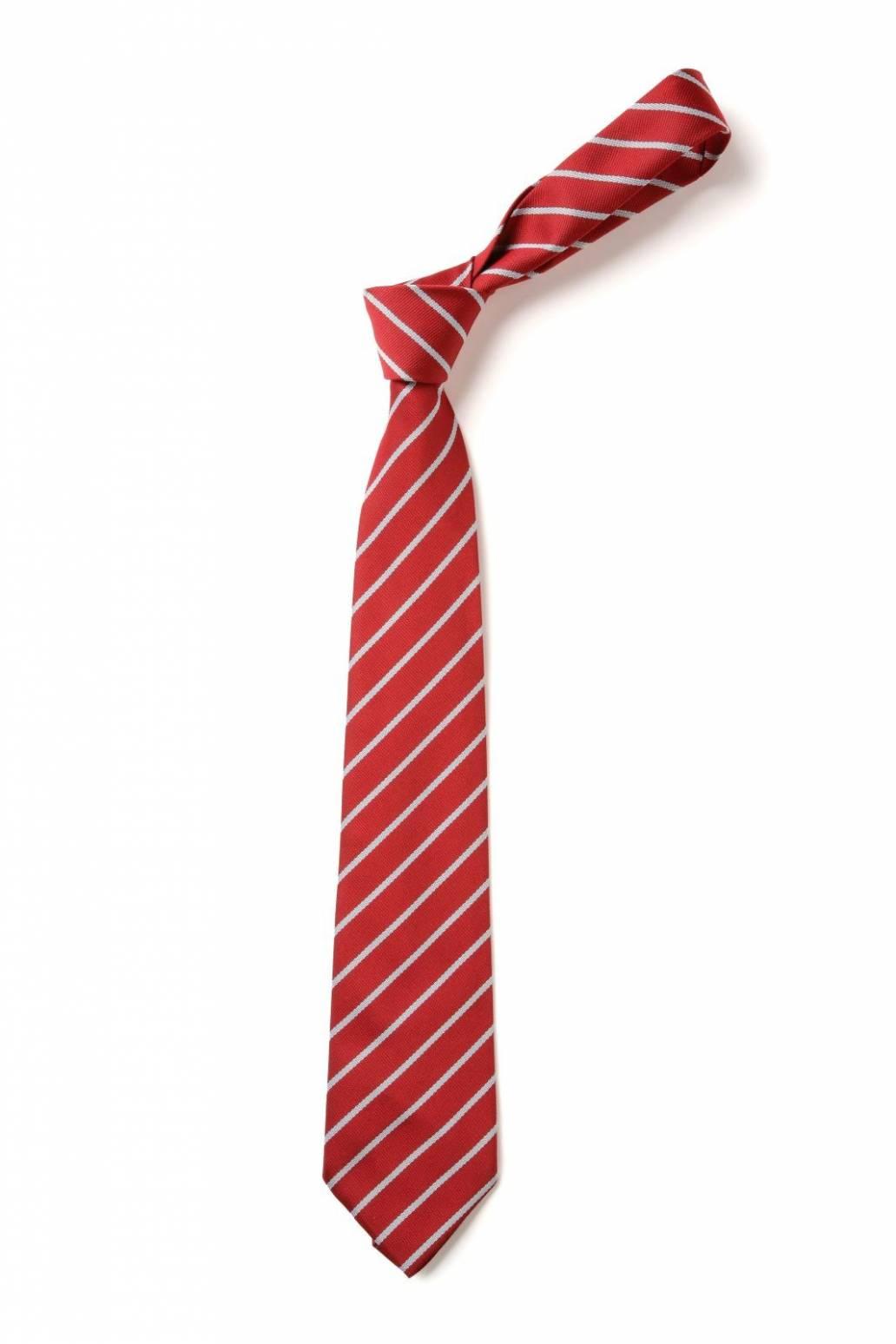 Blackpool School Tie