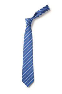 Salcombe Primary School Tie