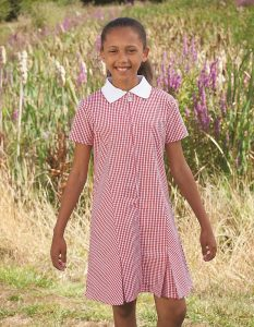 Gingham Zip Front School Summer Dress (Avon)