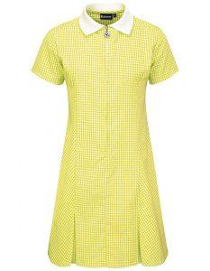 Gingham Zip Front School Summer Dress (Avon)
