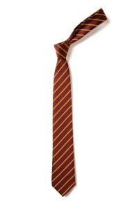 Rydon Primary School Tie